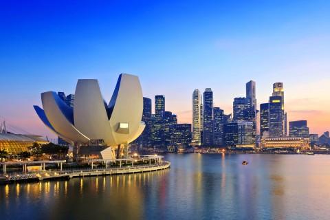 新加坡艺术科学博物馆