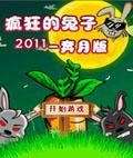 疯狂的兔子2011