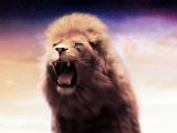 雄狮的怒吼