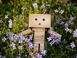 花丛中的纸盒人