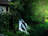 林间小瀑布