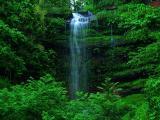 清澈的林间瀑布