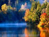 秋季清晨薄雾