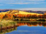 新疆白沙湖风景