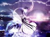 天使的羽翼