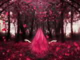 森林里的长发公主