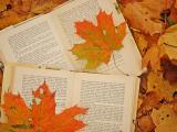 临近的秋天