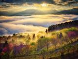 云梦中的山川