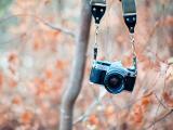 相机里的记忆