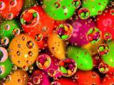 水珠里倒映出来的糖豆