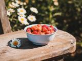 阳光下的草莓