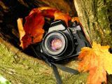 相机里的世界