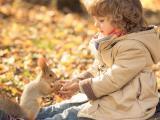 喂松鼠的小男孩
