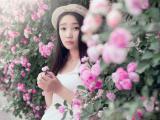 蔷薇花中的美女