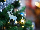 圣诞树上的麋鹿