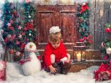 圣诞小天使