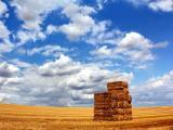 唯美蓝天白云草地