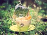 咖啡杯里的茶