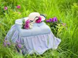 草丛里的帽子
