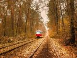 行驶中的有轨电车