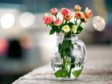 玻璃瓶中的玫瑰