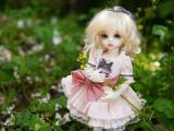 草丛里的洋娃娃