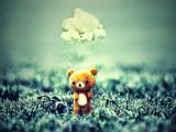 雨中的小熊