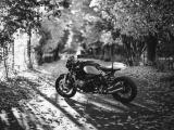 树荫下的宝马摩托车