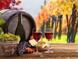 品尝葡萄美酒