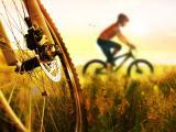 野外自行车运动
