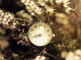 时间在一点点流逝