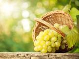 篮子里的青提葡萄