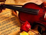 浪漫的旋律