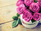 娇艳的玫瑰插花