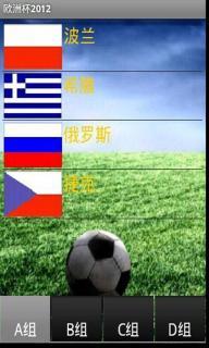 欧洲杯2012软件截图2