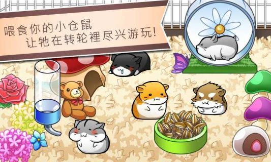 仓鼠的日常游戏截图5