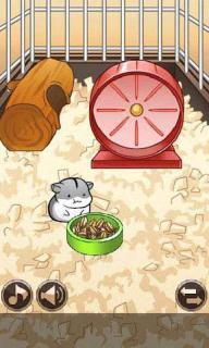 仓鼠的日常游戏截图3