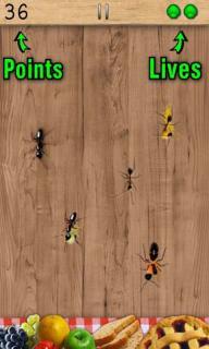 蚂蚁终结者安卓版截图