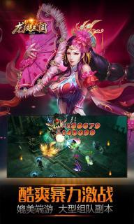 龙纹三国游戏截图1