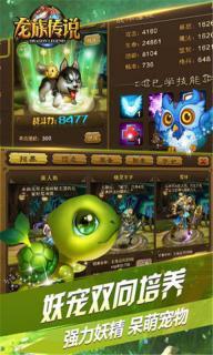 龙族传说安卓版截图