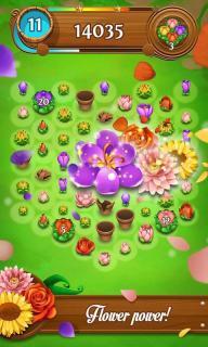 绽放花朵传奇游戏截图4