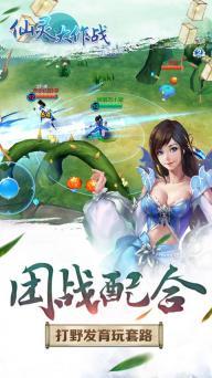 仙灵大作战游戏截图4