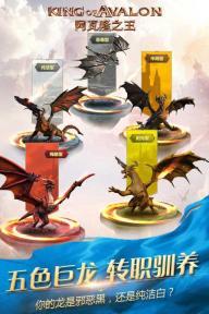 阿瓦隆之王游戏截图2