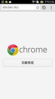 谷歌浏览器软件截图1